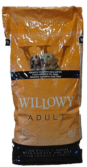 Willowy Adult